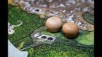 Spirit Island | An Overview  image