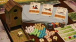 "Wingspan on NPR: ""A Board Game Where Birds (And Science) Win"" image"