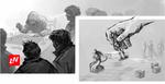 LOODO NINJA – 5 Best Board Games to Back on Kickstarter Right Now image