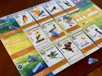 Custom Set of Painted North American Wingspan Bird Meeples